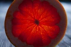 Genomskinligt snitt av en mogen röd citrusfrukt texturerat och specificerat Arkivbilder