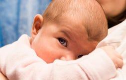 Genomträngande blick av barnet Royaltyfria Foton