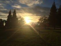 Genomträngande solnedgång Royaltyfri Bild