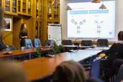 Genossenschaftliche Geschäftsfrau auf Vorstellungsgespräch Stockbilder
