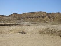 Genoux d'éléphant en parc d'état de désert d'Anza-Borrego image stock