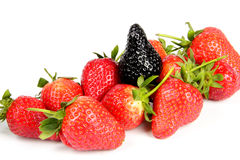 Genovariation. Red and black strawberry isolated on white background Royalty Free Stock Image