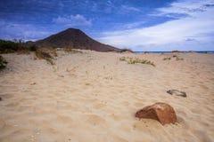 Genoveses beach and sea Stock Image