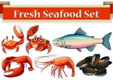 Genre différent de fruits de mer frais Illustration de Vecteur