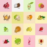 Genre différent de fruits exotiques pour le menu de barre Illustration Libre de Droits