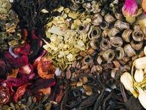 Genre différent de thé Photos stock