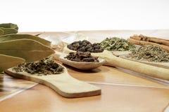 Genres divers d'épices sur le fond blanc Photos stock