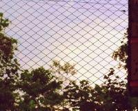 Gens de coucher du soleil images stock