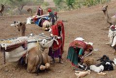 Gens de nomade en Inde Photos stock