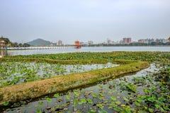 Gens du pays avec l'intérêt architectural de style chinois - Dragon Tiger Tower Photographie stock