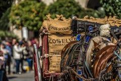 Gens du pays de fiesta de caballos de Carreta image stock