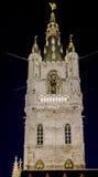 Gent Night Belgium Sint-Baafsplein Church Royalty Free Stock Photos