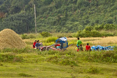 Gente asiatica del lavoratore povero asiatico dell'agricoltore, campagna Laos Fotografia Stock Libera da Diritti