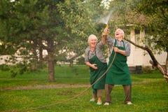Gente con la manguera que se divierte Imagen de archivo