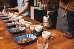 Gente con la variedad de granos y de tazas de café en el roastery Foto de archivo libre de regalías