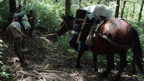 Gente con los caballos en la caza de la montaña almacen de video