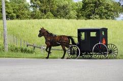 Gente de Amish (mennonite) que monta su cochecillo Fotos de archivo