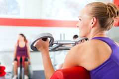 Gente de la gimnasia que hace el entrenamiento de la fuerza o de la aptitud Imagen de archivo libre de regalías