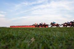 Gente del ángulo bajo de la acción de la carrera de caballos Foto de archivo libre de regalías