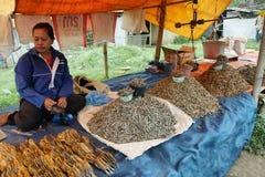 Gente del grupo étnico minoritary en un mercado de Indonesia Imágenes de archivo libres de regalías