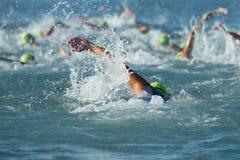 Gente del grupo en la natación del wetsuit imagen de archivo libre de regalías