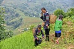 Gente del PA del Sa en Vietnam Fotografía de archivo libre de regalías