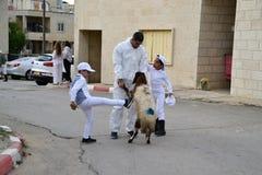 Gente del samaritano en el sacrificio tradicional de la pascua judía en el soporte Gerizim cerca de la ciudad de Cisjordania del  fotos de archivo libres de regalías