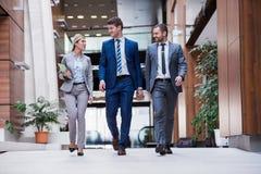 Gente di affari del gruppo Immagini Stock