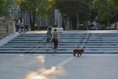 Gente di camminata con il cane in parco, Bacu Immagini Stock Libere da Diritti