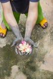 Gente di giardinaggio delle mani scure con le rose Fotografie Stock