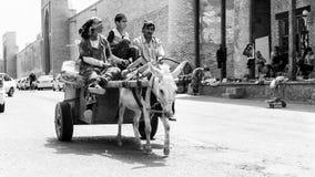 Gente en BUKHARA, UZBEKISTÁN Foto de archivo