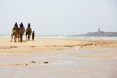 Gente en el camello en la playa Fotografía de archivo libre de regalías
