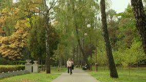 Gente en el cruce en el parque D3ia del otoño Tiro liso del carro metrajes
