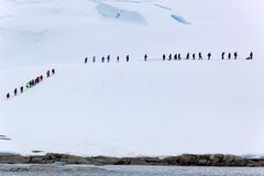 Gente en el hielo Foto de archivo libre de regalías