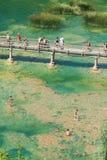 Gente en el lago Imagen de archivo libre de regalías