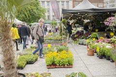 Gente en el mercado al aire libre de la flor delante del ayuntamiento de Nottingham imagen de archivo libre de regalías