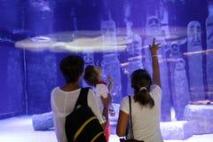 Gente en el oceanarium Fotografía de archivo libre de regalías