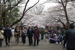 Gente en el parque de Ueno fotos de archivo libres de regalías