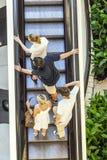 Gente en escalera móvil Fotografía de archivo libre de regalías