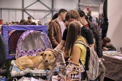 Gente en la distribución de la demostración de animales perdidos Foto de archivo libre de regalías