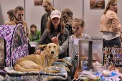 Gente en la distribución de la demostración de animales perdidos Imágenes de archivo libres de regalías