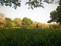 Gente en parque del otoño Fotografía de archivo libre de regalías