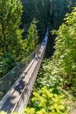 Gente en puente colgante de Capilano entre árboles imagenes de archivo