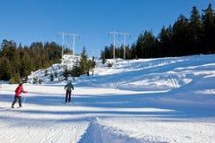 Gente en Ski Field Fotografía de archivo libre de regalías