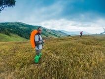 Gente felice con le armi alzate su e godendo di bella foresta pluviale tropicale fotografie stock
