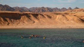 Gente implicada en bucear en el mar almacen de metraje de vídeo