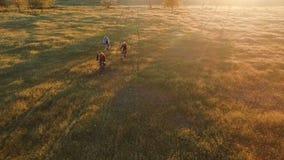 Gente joven que completa un ciclo en las bicicletas a través de campo verde y amarillo del prado del verano metrajes