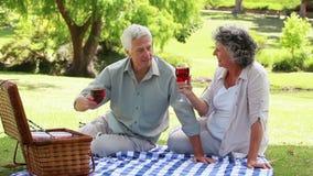 Gente matura che si siede su una coperta con i vetri di vino rosso archivi video