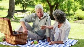 Gente matura felice che mangia un picnic stock footage