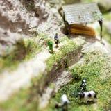 Gente miniatura: donna due che sta su un percorso della montagna e che parla vicino a pascere le mucche Macro foto, DOF basso Immagini Stock